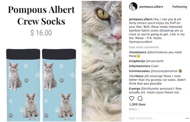 Pompus Albert Socks