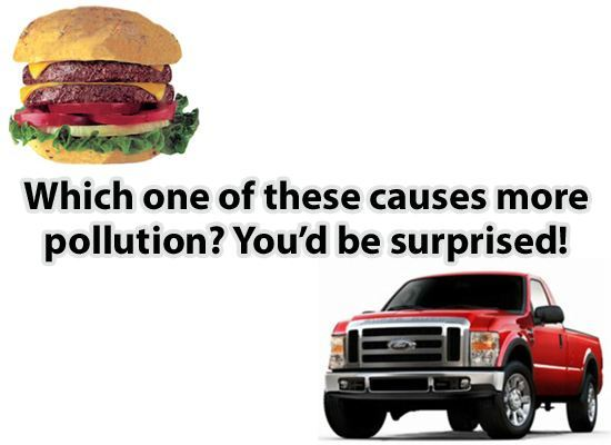 Hamburgers Pollute More Than Powerstrokes