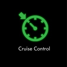 electronic cruise control function and diagnosis