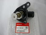 Thermostat Assembly (Nippon Thermostat)