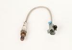 Sensor Asm-Htd Oxy  (Post-Catal