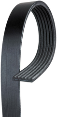 Belt-W/Pmp & A/C Cmpr & Gen & P/S Pump