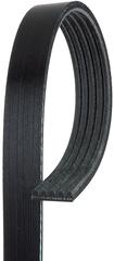 Belt-Gen & A/C Cmpr