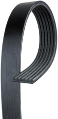 Belt,W/Pmp & A/C Cmpr & Gen & P/S Pump