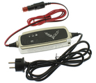 Battery Charger, 220 Volt