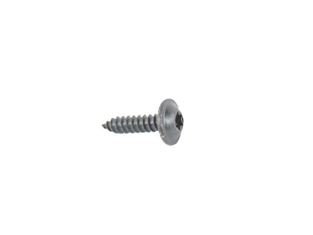 License Lamp Screw