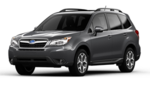 Molding Body Side, Dark Gray Metallic [ 2014- Forester ]