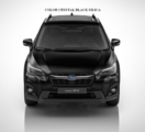 Molding Body Side, Crystal Black Silica [ 2018 XV Cross Trek or Impreza ] CODE D4S