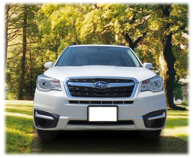 Front License Plate Mount 2017-2018 Forester (NON TURBO)
