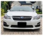 Front License Plate Mount 2015-2016 Impreza
