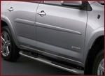 Body Side Molding - Everglade Metallic  6T6
