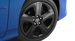 Prius Blackout Wheel Inserts