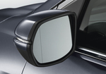 Expanded View Mirror